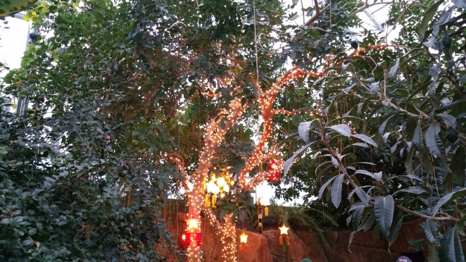 Meijer Gardens Holiday Traditions
